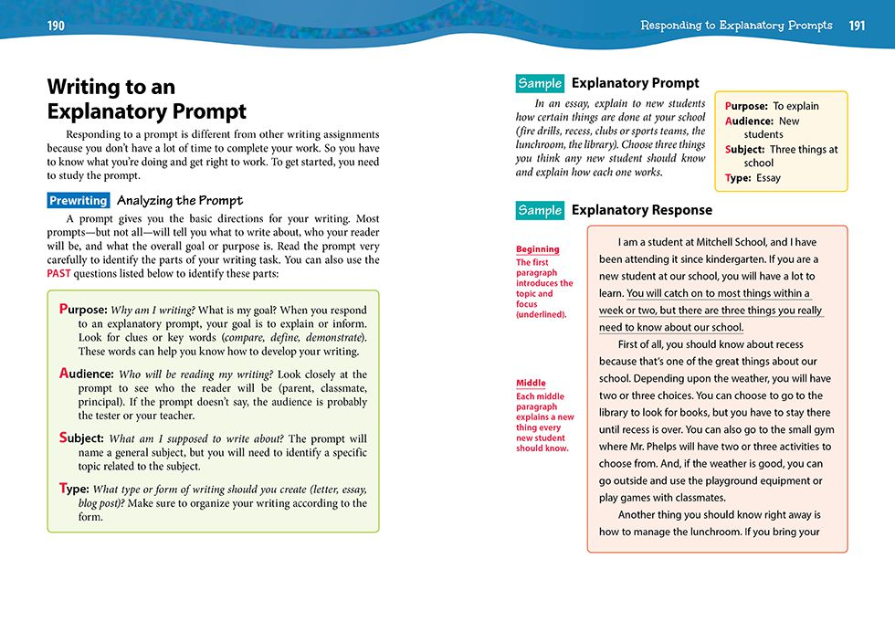 Sample compare and contrast essay for middle school