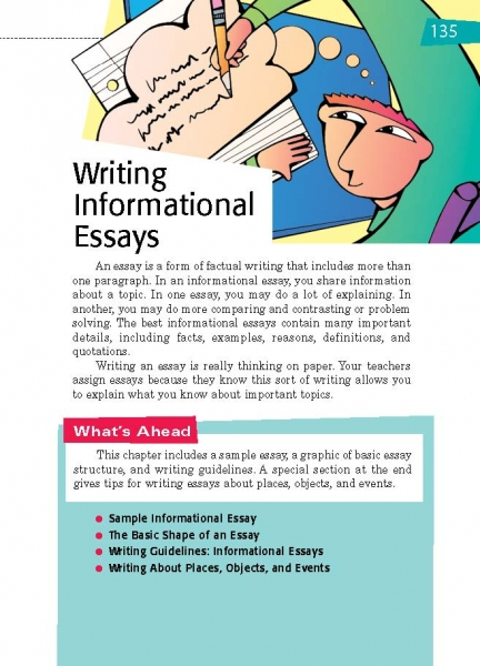 What Is A Professional Essay All Write Purple Hibiscus Essay also Punishment Essays  Writing Informational Essays  Thoughtful Learning K Essay Revision