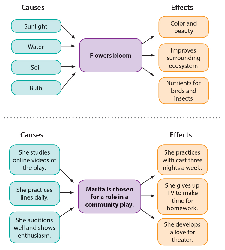 Cause-Effect Diagram